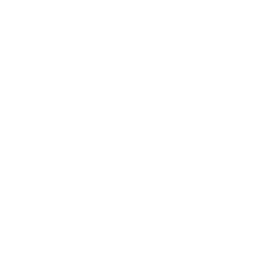 Chair of Trustees